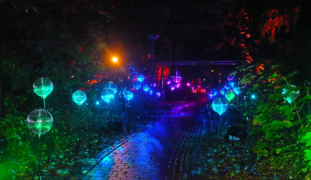 lichtlauf-lichtinstallation.jpg